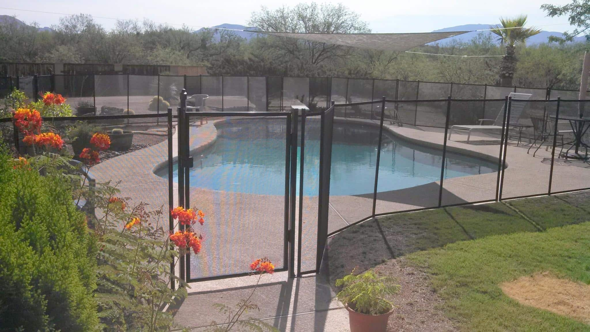 Gate of a curvy mesh pool fence - note the presence of a shade over the pool RM117