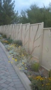 Iron fence with painted metal plates with ocotillo motif IF225-2