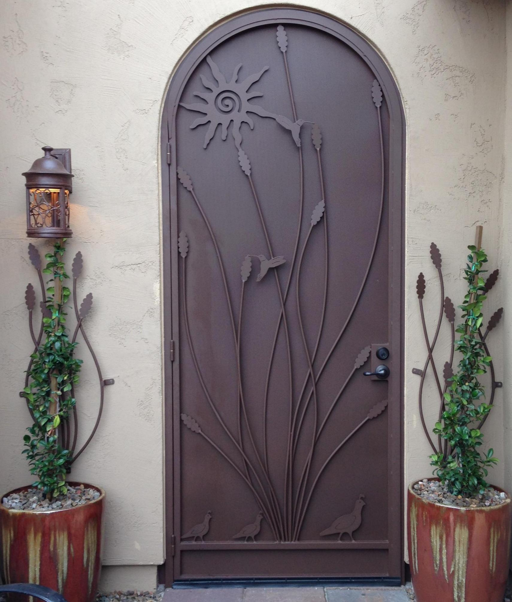 Security door with ocotillo and hummingbird motifs, and additional wrought iron ocotillo decorative patterns on each side E349
