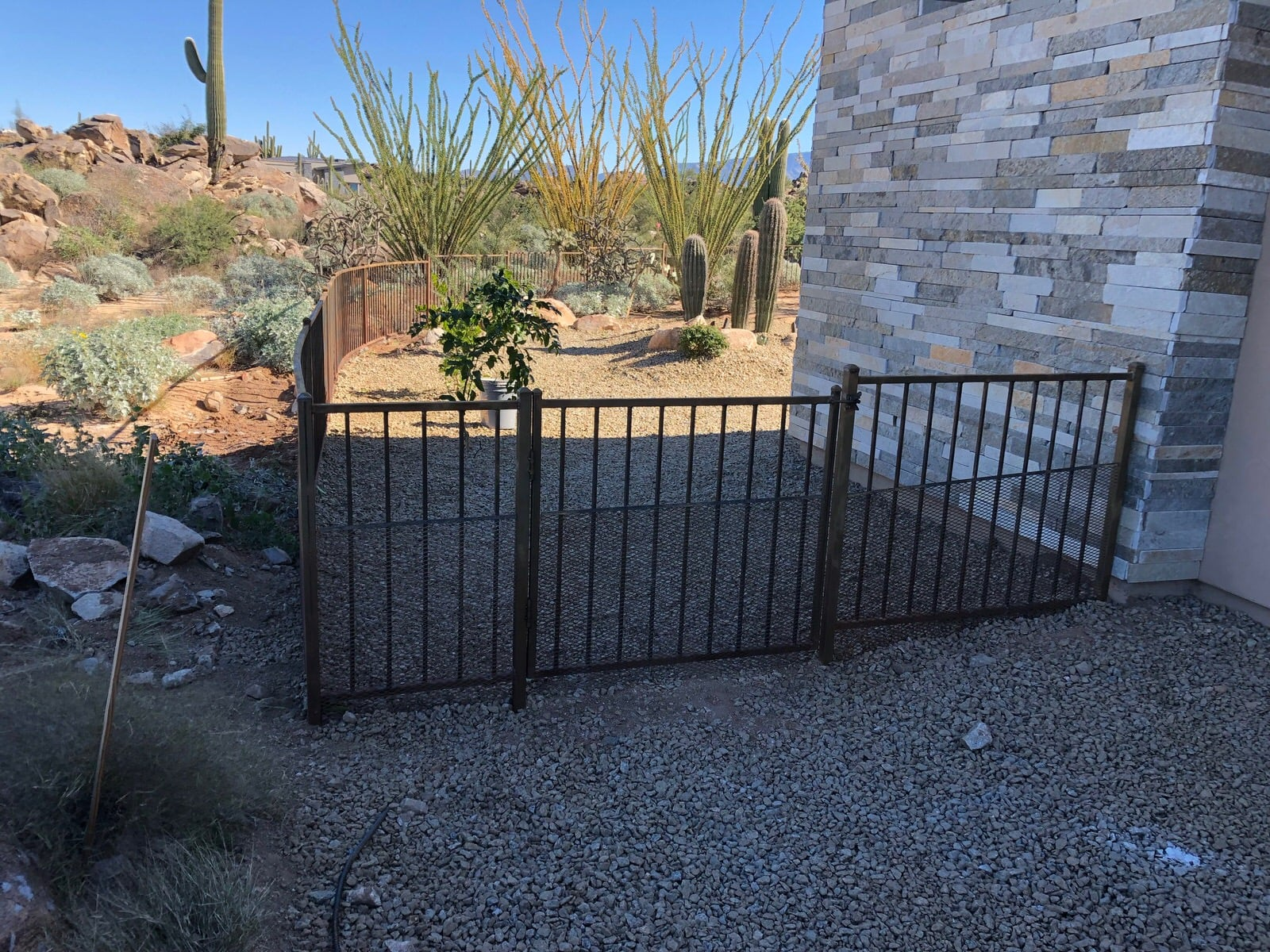 Low stepped iron fence with trellis backing 0255 - Installed in the Foothills of Tucson