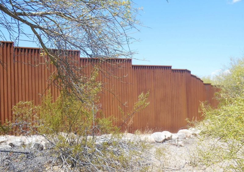 Corrugated Steel 262 CF